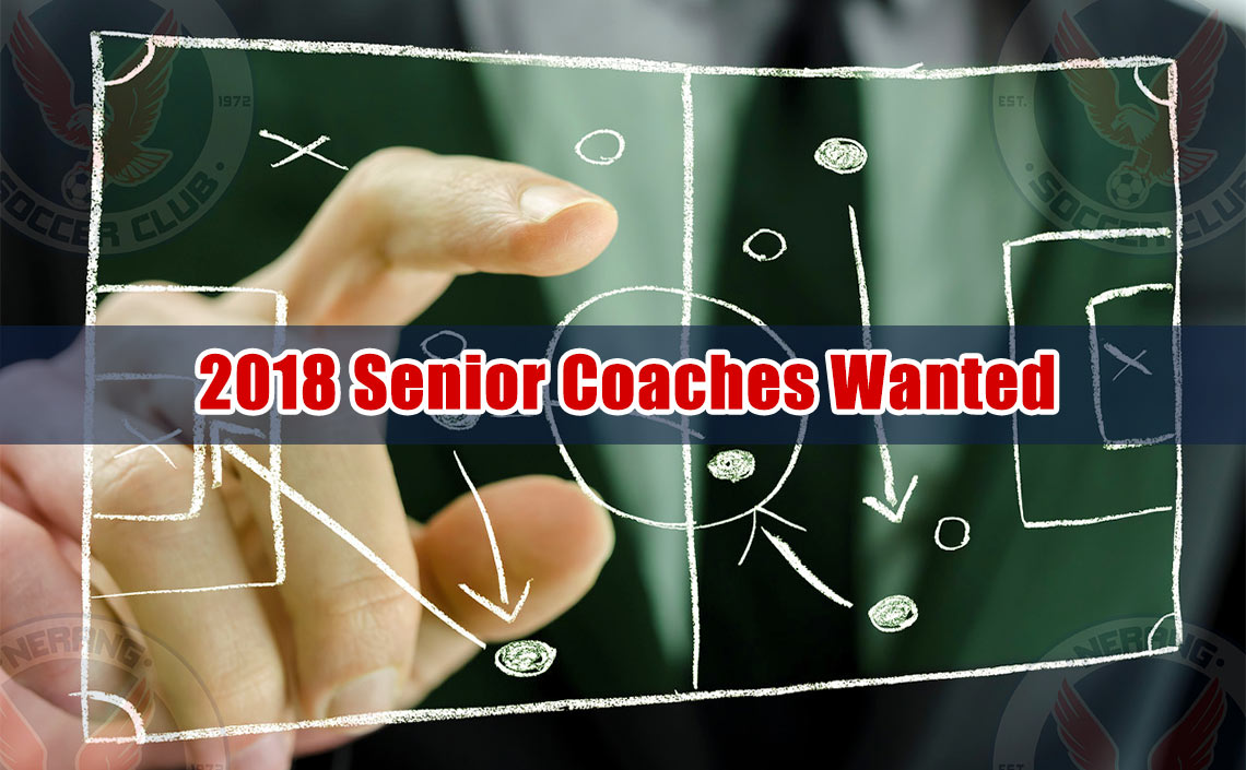 Exceptional Coaching Opportunity Opens Up At Nerang Eagles For 2018